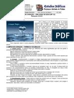 LIÇÃO 08 - EBD - PUREZA DE CORAÇÃO – UMA VISÃO DE DEUS _MT 5.8_ impresso