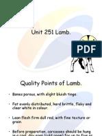 Unit 251 Lamb