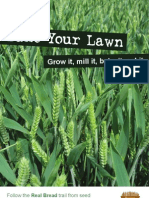 Bake Your Lawn[1]