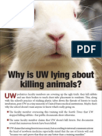 UW Rabbit Ad the Daily