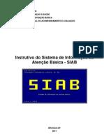 InstrutivoSIAB2011 (1)