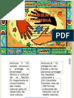 Etnias y Culturas Colombianas Ecosistemas Colombianos[1]