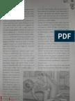 Doamna Miracolului - Original si Frauda doc. 3