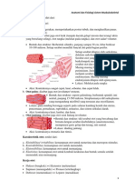Anatomi Fisiologi Sistem Muskuloskeletal