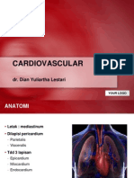 cardiovasculer