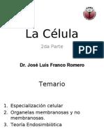 La Célula II 2006