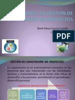 4.9HABILITADORES GESTIÓN DE CAPACITACIÓN EN PROYECTOS