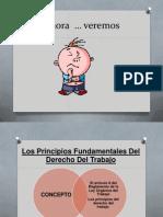 Los Principios Del Proceso Laboral