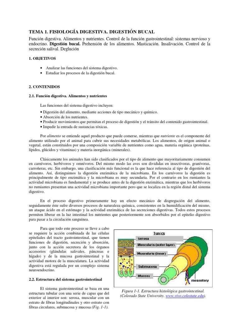Bloque 1 Cap 5 Tema 1. Digestion Bucal