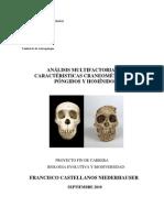 ANÁLISIS MULTIFACTORIAL DE CARACTÉRISTICAS CRANEOMÉTRICAS EN PÓNGIDOS Y HOMÍNIDOS
