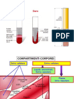 Biofisica Del Sangue