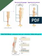 7 - Controllo Della Postura