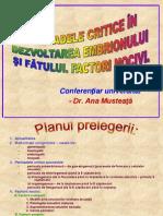 Anomalii de Dezvoltare - A. Musteata