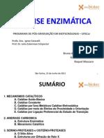 Catálise Enzimática [Bioquímica I]._