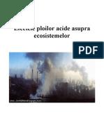 Efectele Ploilor Acide Asupra Ecosistemelor