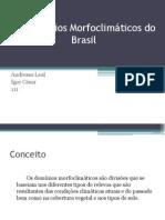 Os Domnios Morfoclimticos Do Brasil 1213198153331861 8