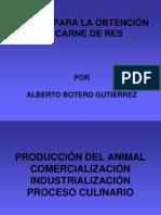 ETAPAS EN LA PRODUCCIÓN DE CARNE