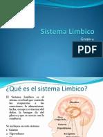Sistema Limbico