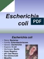 presentación de E coli