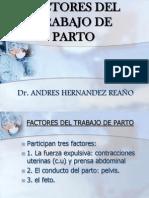 Expo Sic Ion Factores Del Parto