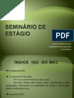 SEMINÁRIO DE ESTÁGIO AP 2
