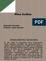 Mina Andina