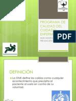 5 PROGRAMA DE CALIDAD DEL CUIDADO ENFERMERO.5° Indicador