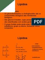 1B-fosfolípidos