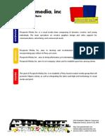 Picopixels Profile 2