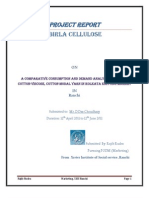 Project Aditya Birla Celulose Final