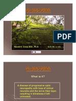 Glaucoma PDF