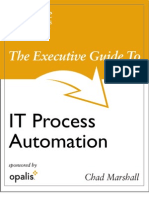 Executive Guide to Process Automation