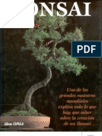 Bonsai - Peter Chan- Spanish