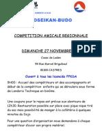Compétition amicale - Castres 27 11 2011