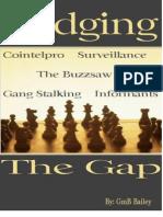 45 Bridging the Gap Cointelpro Surveillance Gang Stalking Informants