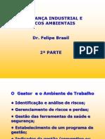 Seg Riscos Felipe Brasil