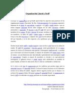 3organizacion Lineal y Staff