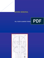 08_Sistemas-Sensoriales