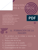 FORMACIÓN DE IMÁGENES & VIA VISUAL