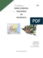 Perfil Industrial Forestal de NIcaragua Octubre 2011