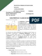 Caracteristicas y Clases de Cnidocitos Auto Guard Ado)