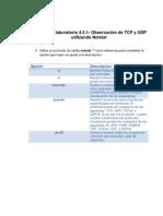 Práctica de laboratorio 4.5.1 Observación de TCP y UDP utilizando Netstat