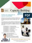 Capacity Building Blocks Nonprofit Training Brochure