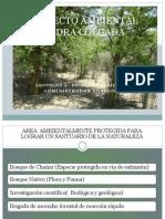 Proyecto Ambiental Piedra Colgada 2