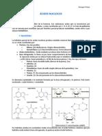 Tema. Bioquimica Acidos Nucleicos
