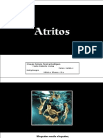 ATRITOS Roberto Crema