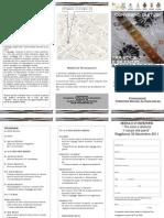 Leaflet Convegno