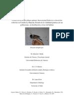 Informe Proyecto Castilla La Mancha 2007 Colab