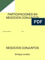 2010_-_NEGOCIOS_CONJUNTOS