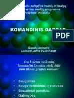 KOMANDINIS_DARBAS